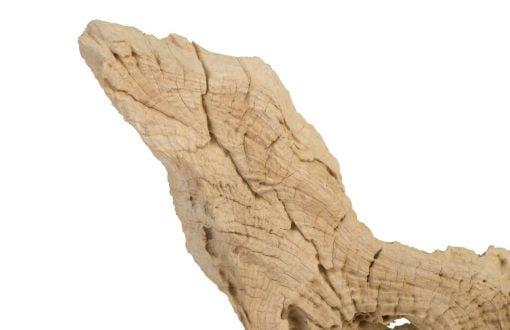 teak sculpure 16 inch details 2