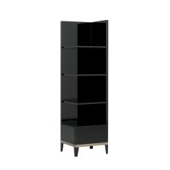 mont noir bookcase 002