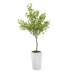 accessories gardenia botanical