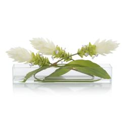 accessories nouvelle botanical