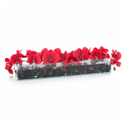 accessories red eternity botanical