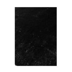 Charisma Rug in Black